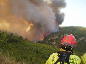 Qué hacer en caso de incendio forestal